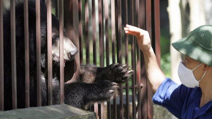 Bộ Y tế khuyến cáo Covid-19 có thể lây từ động vật sang người