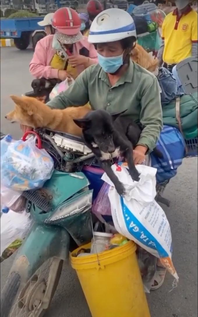 Dân mạng dậy sóng vì tin 15 bé cún theo cặp vợ chồng về Cà Mau đã bị tiêu hủy