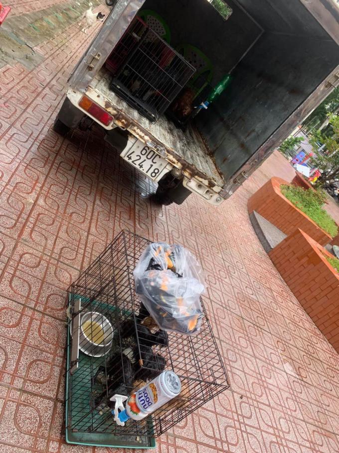 Ấm lòng: 12 chú chó của F0 được cán bộ phường chăm sóc cẩn thận khi chủ đi cách ly