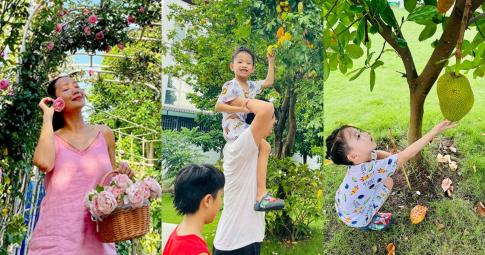 Biệt thự của Ốc Thanh Vân có vườn nhà toàn hoa hồng quý, 3 nhóc tỳ thích thú trồng rau, hái trái